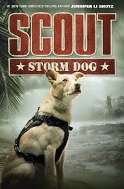scout-  storm dog