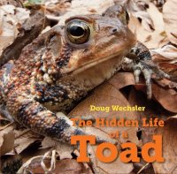 Hidden Life of a Toad  (The Hidden Life of a Toad)