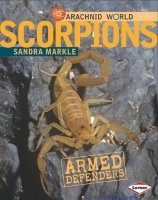 Scorpions: Armed Stingers
