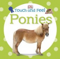 DK touch and feel ponies