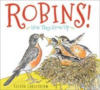 Robins: How They Grow Up