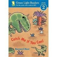 green light readers catch me if you can