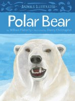 Animals Illustrated:  Polar Bear