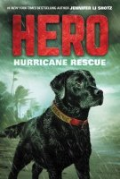 Hero, Book 2:  Hurricane Rescue