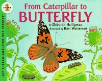 Let's Read and Find Out Science: From A Caterpillar to a Butterfly, Stage 1