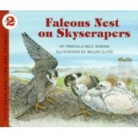 Let's Read and Find Out Science: Falcons Nest On Skyscrapers, Stage 2