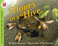 Let's Read and Find Out Science: Honey in A Hive, Stage 2