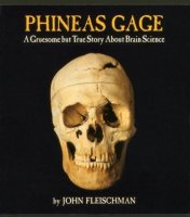 Phineas Gage  A Gruesome But True Story About Brain Science
