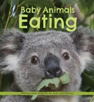 Baby Animals Eating     (Baby Animals, Book 3)