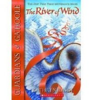 Guardians of Ga'hoole, Book 13: The River of Wind