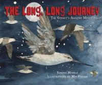Long, Long Journey: The Godwits' Amazing Migration