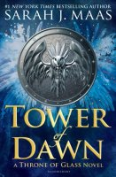 Throne of Glass, Book 6:  Tower of Dawn