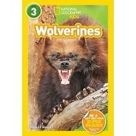national geographic readers wolverines