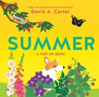 Summer: A Pop Up Book  (Seasons Pop Up series)