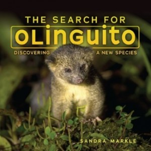 Search for Olinguito: Discovering a New Species