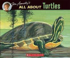 all about turtles   jim  arnosky