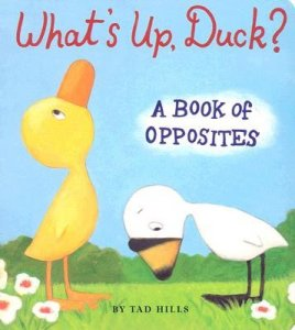 What's Up Duck?  A Book of Opposites