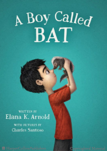 Bat, Book 1        A Boy Called Bat