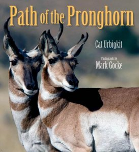 Path of the Pronghorn