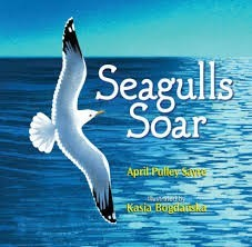 seagulls soar by April pulley sayre