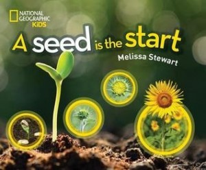 Seed Is the Start  (A Seed Is the Start)