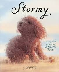 download (stormy