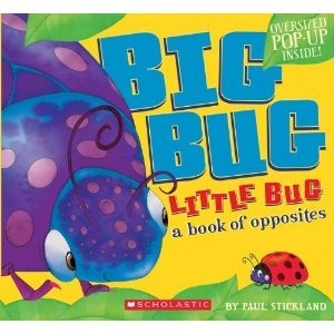 Big Bug Little Bug: A Book of Opposites