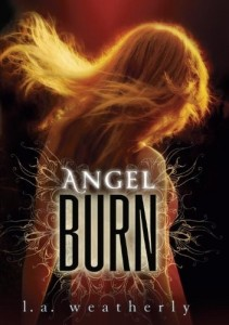 Angel Burn  (Book 1)