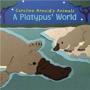 A Platypus' World