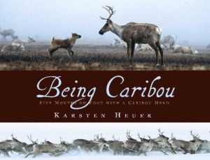 Being Caribou   Five Months On Foot With a Caribou Herd