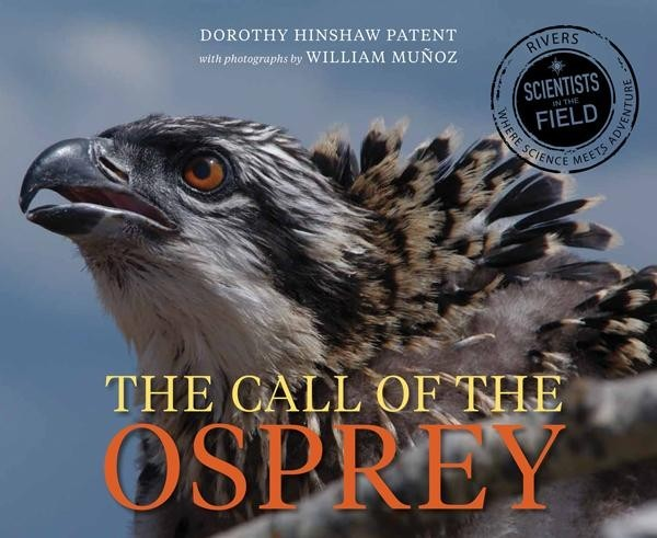Call of the Osprey  (Scientists in the Field)